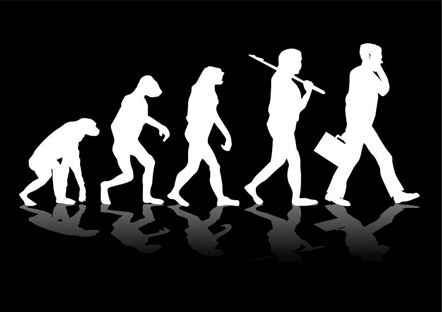 evolution übersetzung