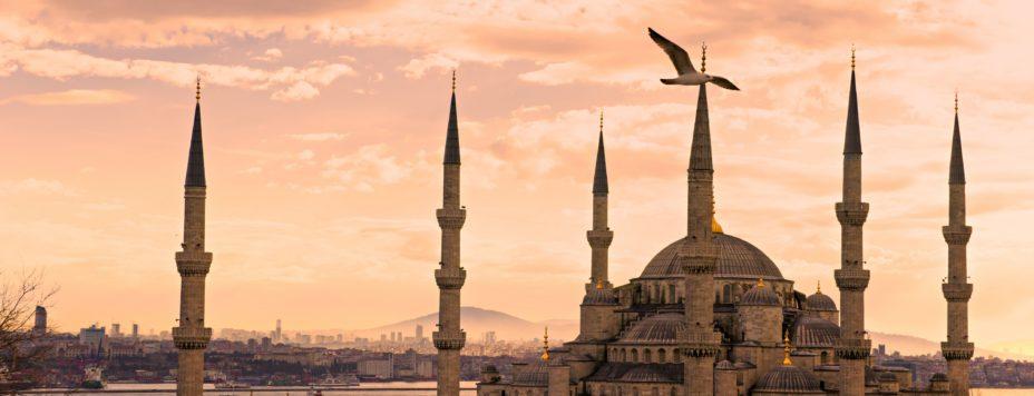 Moschee mit fliegenden Vögeln